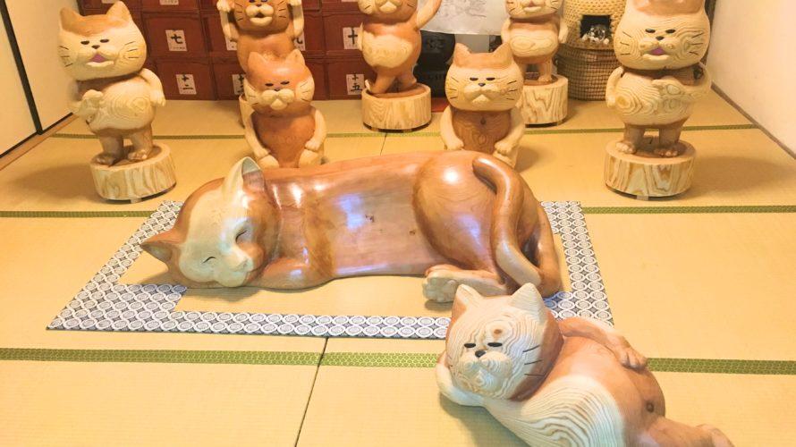 山口県の猫になれる猫寺雲林寺に行ってみた