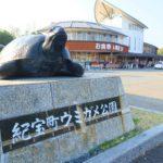 ウミガメと触れ合える道の駅・紀宝町ウミガメ公園に行ってみた