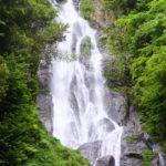ニホンザルに出会える中国地方一の滝・神庭の滝に行ってみた